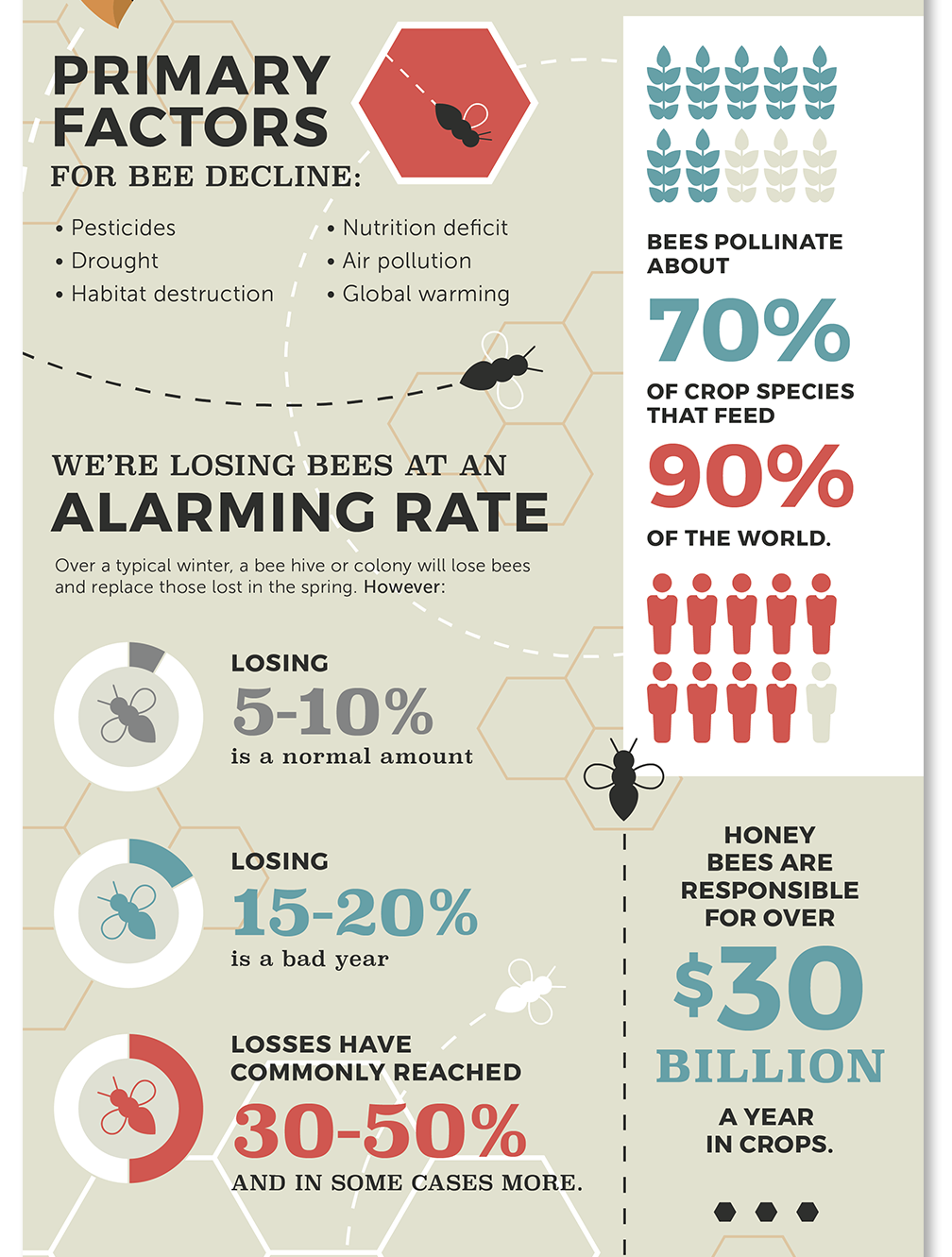 bee infographic design