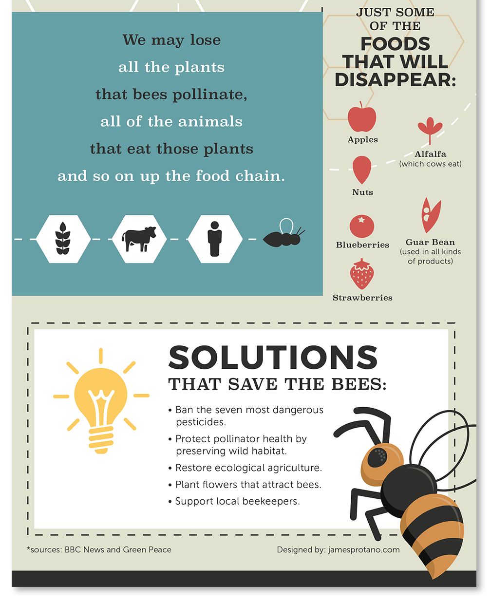 bee solution infographic design